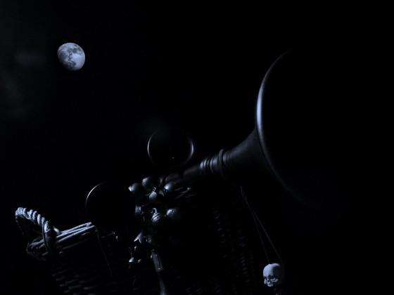 Nachts im Körbchen...!